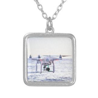 Zangão do vôo na costa acima do mar colar banhado a prata
