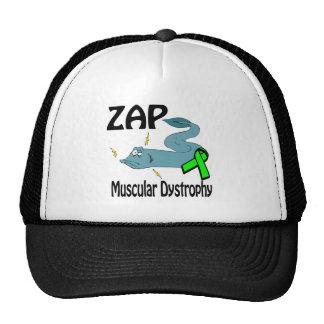 ZAP a distrofia muscular Boné