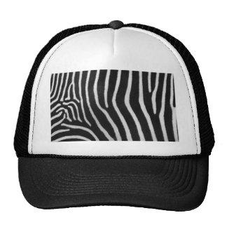 zebra-9 boné
