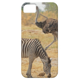 Zebra e avestruz TomWurl.jpg Capa Barely There Para iPhone 5