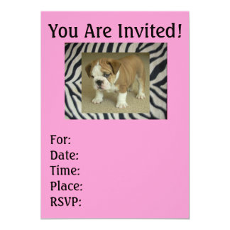 Zebra inglesa do filhote de cachorro do buldogue & convite 12.7 x 17.78cm