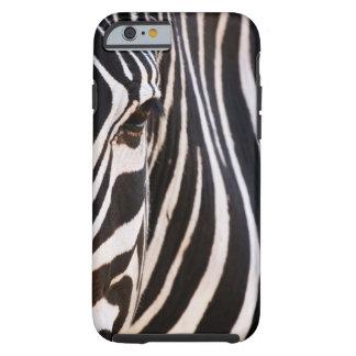 Zebra listrada preto e branco capa tough para iPhone 6