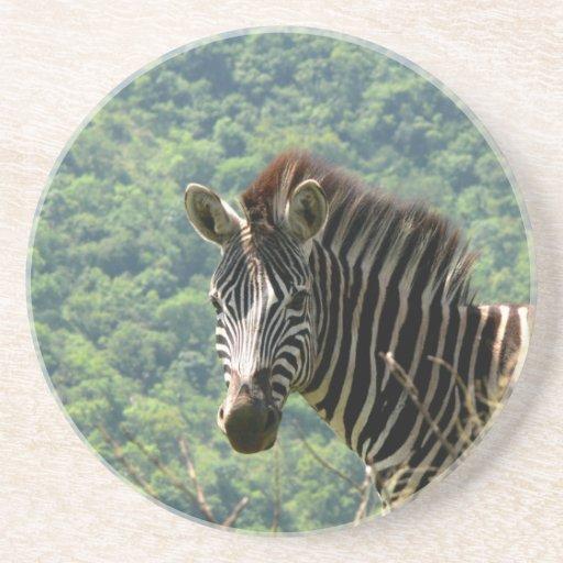 Zebra Porta-copos