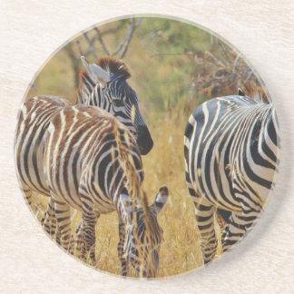 Zebra Porta Copo Para Bebidas