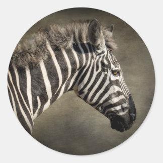 Zebra selvagem adesivo redondo