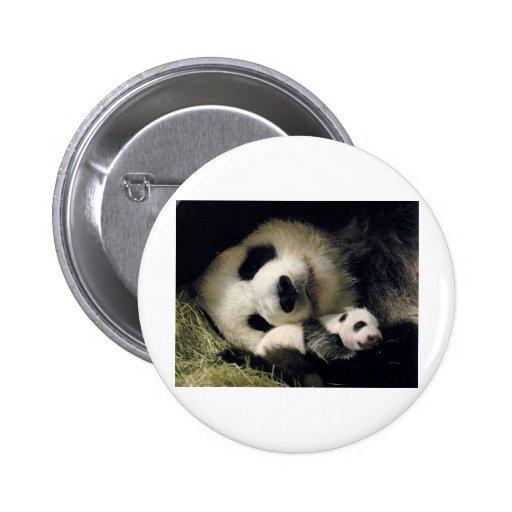 zoo-atlanta_giant_panda_lun-lun_and_cub botons