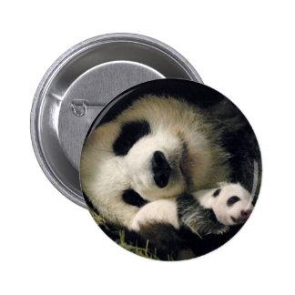 zoo-atlanta_giant_panda_lun-lun_and_cub bóton redondo 5.08cm